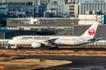 RUNWAY23.TADAさんが、羽田空港で撮影した日本航空 787-8 Dreamlinerの航空フォト(飛行機 写真・画像)