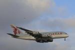 しかばねさんが、シドニー国際空港で撮影したカタール航空 A380-861の航空フォト(飛行機 写真・画像)