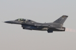 キャスバルさんが、ルーク空軍基地で撮影したアメリカ空軍 F-16DG Night Falconの航空フォト(飛行機 写真・画像)