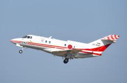 tamtam3839さんが、名古屋飛行場で撮影した航空自衛隊 U-125 (BAe-125-800FI)の航空フォト(飛行機 写真・画像)