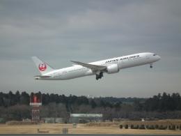ヒコーキグモさんが、成田国際空港で撮影した日本航空 787-9の航空フォト(飛行機 写真・画像)
