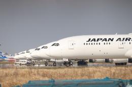 パピヨンさんが、羽田空港で撮影した日本航空 787-9の航空フォト(飛行機 写真・画像)