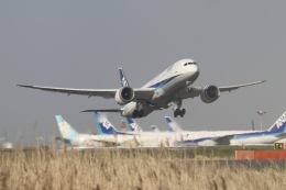 パピヨンさんが、羽田空港で撮影した全日空 787-9の航空フォト(飛行機 写真・画像)