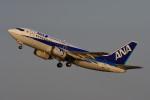 のぎスポさんが、伊丹空港で撮影したANAウイングス 737-54Kの航空フォト(飛行機 写真・画像)