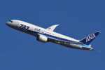のぎスポさんが、伊丹空港で撮影した全日空 787-8 Dreamlinerの航空フォト(飛行機 写真・画像)