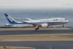N.tomoさんが、羽田空港で撮影した全日空 787-8 Dreamlinerの航空フォト(飛行機 写真・画像)