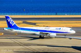 かっちゃん✈︎さんが、羽田空港で撮影した全日空 A320-211の航空フォト(飛行機 写真・画像)