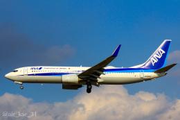 かっちゃん✈︎さんが、伊丹空港で撮影した全日空 737-881の航空フォト(飛行機 写真・画像)