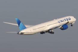 tg36aさんが、羽田空港で撮影したユナイテッド航空 787-10の航空フォト(飛行機 写真・画像)