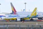 panchiさんが、成田国際空港で撮影したセブパシフィック航空 A320-214の航空フォト(飛行機 写真・画像)