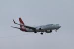 しかばねさんが、シドニー国際空港で撮影したカンタス航空 737-838の航空フォト(飛行機 写真・画像)