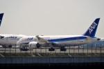 レドームさんが、羽田空港で撮影した全日空 787-8 Dreamlinerの航空フォト(飛行機 写真・画像)