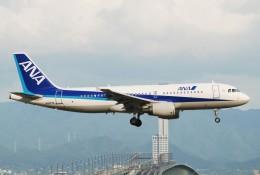 omi3さんが、関西国際空港で撮影した全日空 A320-214の航空フォト(飛行機 写真・画像)