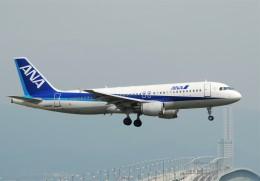 omi3さんが、関西国際空港で撮影した全日空 A320-211の航空フォト(飛行機 写真・画像)