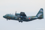 RUNWAY23.TADAさんが、入間飛行場で撮影した航空自衛隊 C-130H Herculesの航空フォト(飛行機 写真・画像)
