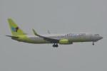 kuro2059さんが、香港国際空港で撮影したジンエアー 737-8SHの航空フォト(飛行機 写真・画像)