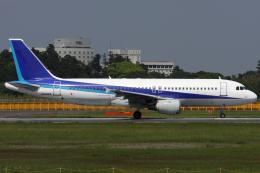 Hariboさんが、成田国際空港で撮影したエアアジア・ジャパン(〜2013) A320-211の航空フォト(飛行機 写真・画像)