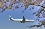 パンダさんが、成田国際空港で撮影したエア・カナダ 777-333/ERの航空フォト(飛行機 写真・画像)