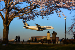 パンダさんが、成田国際空港で撮影したシンガポール航空 A380-841の航空フォト(飛行機 写真・画像)