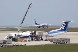 動物村猫君さんが、大分空港で撮影したANAウイングス DHC-8-402Q Dash 8の航空フォト(飛行機 写真・画像)