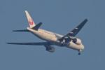 ふぁんとむらいだーさんが、羽田空港で撮影した日本航空 777-246の航空フォト(飛行機 写真・画像)