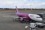 T.Kawaseさんが、仙台空港で撮影したピーチ A320-214の航空フォト(飛行機 写真・画像)