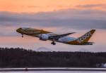 Cygnus00さんが、新千歳空港で撮影したスクート 787-8 Dreamlinerの航空フォト(飛行機 写真・画像)