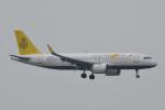 kuro2059さんが、香港国際空港で撮影したロイヤルブルネイ航空 A320-251Nの航空フォト(飛行機 写真・画像)