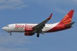 ★azusa★さんが、シンガポール・チャンギ国際空港で撮影したスパイスジェット 737-75C(BDSF)の航空フォト(飛行機 写真・画像)