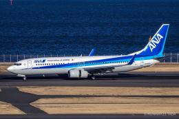 RUNWAY23.TADAさんが、羽田空港で撮影した全日空 737-881の航空フォト(飛行機 写真・画像)