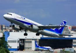 LOTUSさんが、伊丹空港で撮影した全日空 A320-211の航空フォト(飛行機 写真・画像)