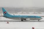 RUNWAY23.TADAさんが、新千歳空港で撮影した大韓航空 737-8Q8の航空フォト(飛行機 写真・画像)