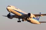 mukku@RJFKさんが、鹿児島空港で撮影した全日空 787-9の航空フォト(飛行機 写真・画像)