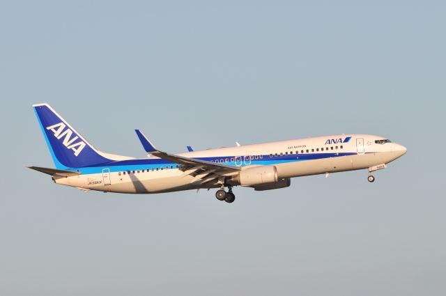 ポン太さんが、羽田空港で撮影した全日空 737-881の航空フォト(飛行機 写真・画像)