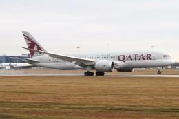 BTYUTAさんが、ヴァーツラフ・ハヴェル・プラハ国際空港で撮影したカタール航空 787-8 Dreamlinerの航空フォト(飛行機 写真・画像)
