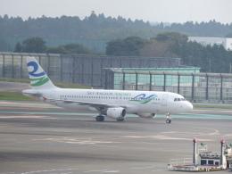蒲田っ子さんが、成田国際空港で撮影したスカイ・アンコール・エアラインズ A320-212の航空フォト(飛行機 写真・画像)