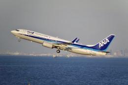 flying_horseさんが、羽田空港で撮影した全日空 737-881の航空フォト(飛行機 写真・画像)