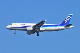 ポン太さんが、羽田空港で撮影した全日空 A320-211の航空フォト(飛行機 写真・画像)