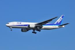 ポン太さんが、羽田空港で撮影した全日空 777-281の航空フォト(飛行機 写真・画像)