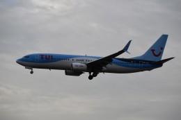 こじゆきさんが、フランクフルト国際空港で撮影したトゥイ・エアラインズ・ベルギー 737-8K5の航空フォト(飛行機 写真・画像)