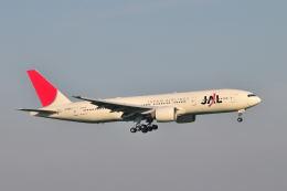 ポン太さんが、羽田空港で撮影した日本航空 777-246/ERの航空フォト(飛行機 写真・画像)