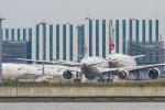 たーぼーさんが、羽田空港で撮影した日本航空 767-346の航空フォト(飛行機 写真・画像)