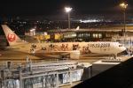 GAさんが、伊丹空港で撮影した日本航空 767-346/ERの航空フォト(飛行機 写真・画像)