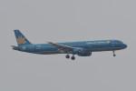 kuro2059さんが、香港国際空港で撮影したベトナム航空 A321-231の航空フォト(飛行機 写真・画像)