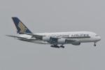 kuro2059さんが、香港国際空港で撮影したシンガポール航空 A380-841の航空フォト(飛行機 写真・画像)