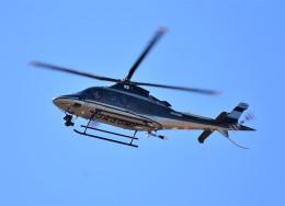 RyuRyu1212さんが、立川飛行場で撮影した警視庁 A109S Trekkerの航空フォト(飛行機 写真・画像)