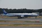 エルさんが、成田国際空港で撮影した全日空 777-381/ERの航空フォト(飛行機 写真・画像)