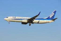 メンチカツさんが、成田国際空港で撮影した全日空 737-881の航空フォト(飛行機 写真・画像)