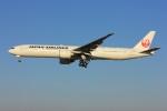 メンチカツさんが、成田国際空港で撮影した日本航空 777-346/ERの航空フォト(飛行機 写真・画像)
