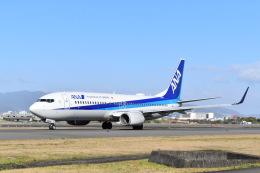 T.Kaitoさんが、伊丹空港で撮影した全日空 737-881の航空フォト(飛行機 写真・画像)